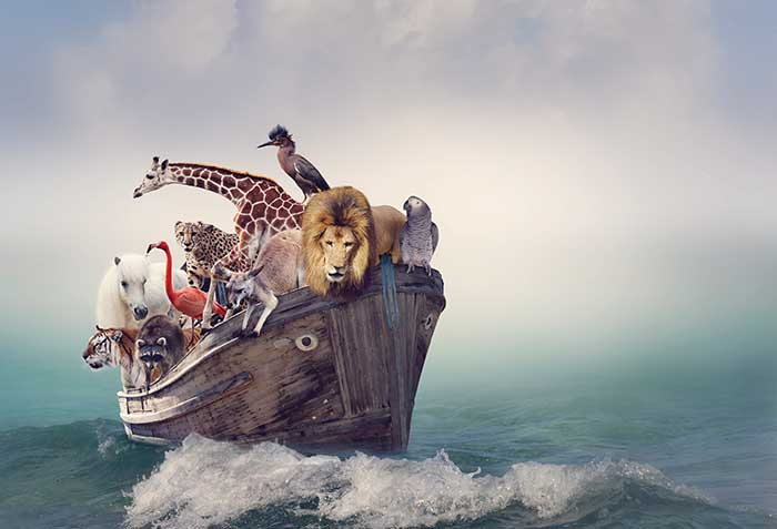 Building an Ark: Protecting Employee Data in the Data-Breach Era