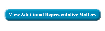View additional representative appellate matters