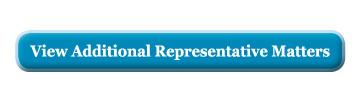 View additional representative matters